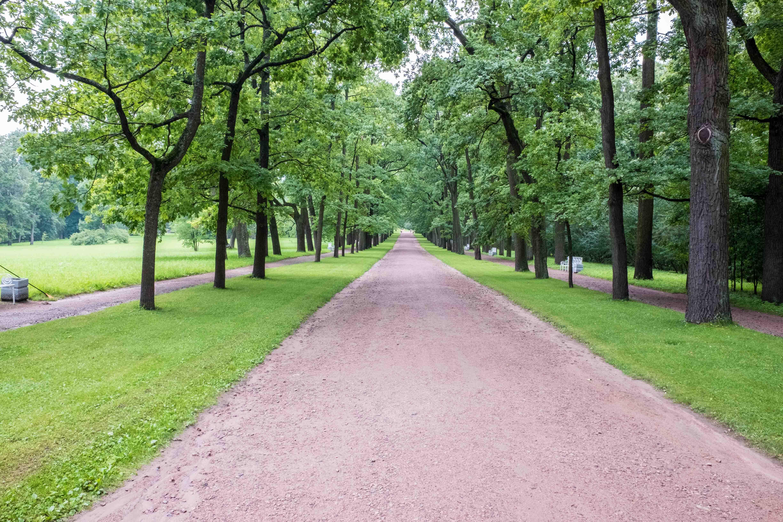 Katharinenpark4 (1 von 1)